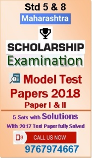 Std 5 & 8 Scholarship Examination Feb 2017 (Maharashtra) Test Paper